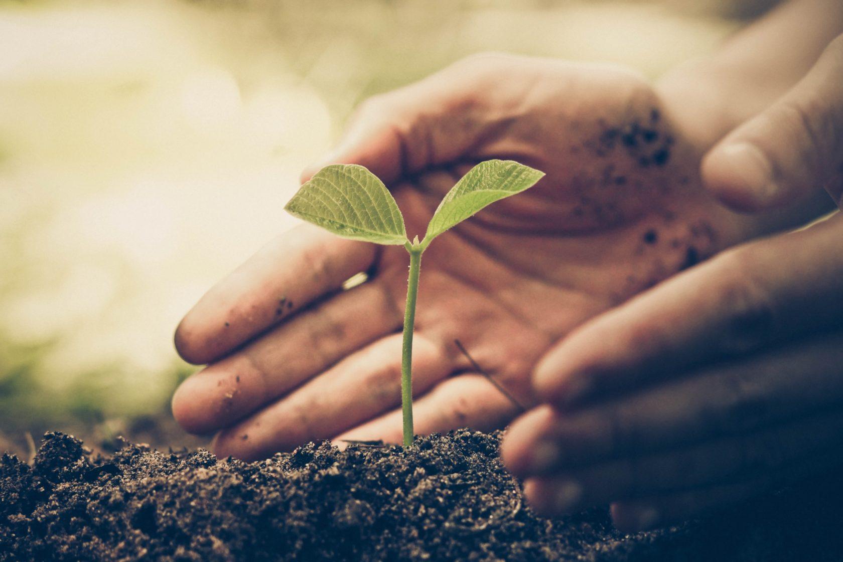 Crops Duurzaamheid